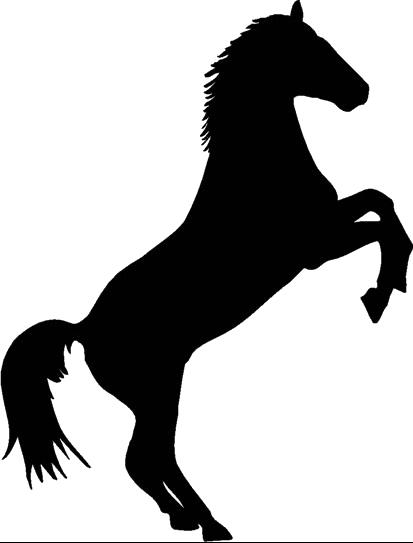 25 chambres de l h tel le cheval noir simples doubles for Reserver un hotel a paris sans payer